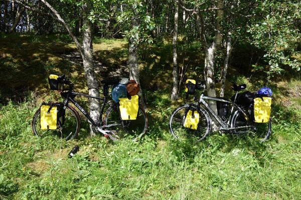 Vi stoler på at ingen stjeler sykler eller utstyr mens vi er på fjelltur. Syklene ble bare parkert i skogkanten der stien opp til Tvillingan startet