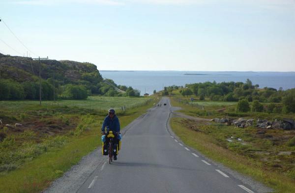 Bjørn på vei over Dønna (fra vest til østsiden)