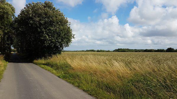 (13:23) Fra Sykkelrute 5 på vei mot Frederiksund.