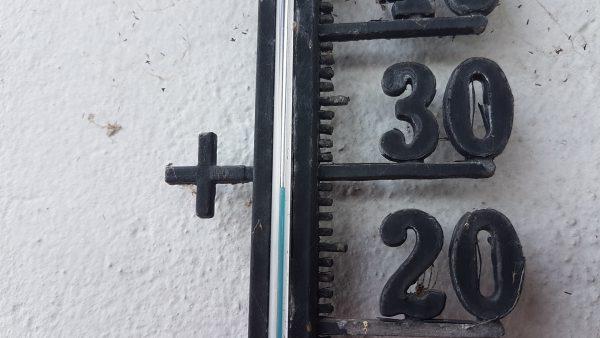 (15:30) Behagelige 29 grader i skyggen. Hvor varmt det er i sola vet jeg ikke men det er varmt nok.
