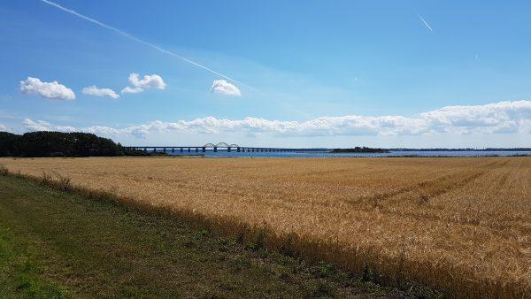(14:37) Broen over til Falster