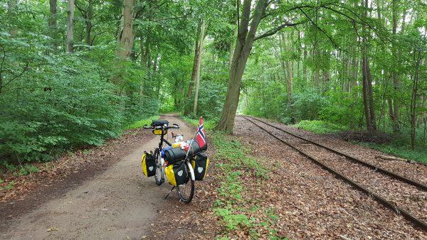 (11:33) Tyskerne er glade i sin skog og også i dag går store deler av ruten inne i en skog. Her også ved siden av jernbanen. Det er fint å sykle her. Jeg liker denne typen skog.
